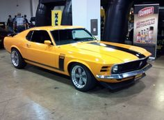 Mustang Tributes 1970 Boss 302, 1966  Shelby GT 350 H, 1966 GT Shelby 35...
