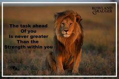Lion Quotes, Animals, Animales, Leo Quotes, Animaux, Animal, Animais