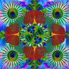 Peacocks Sleep in Trees Peacocks, Trees, My Love, Painting, Animals, Art, Art Background, Animales, Animaux