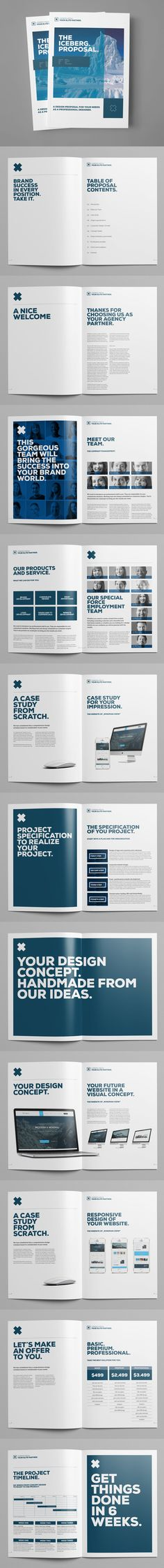 Minimal Proposal Brochure Template INDD PSD