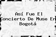 http://tecnoautos.com/wp-content/uploads/imagenes/tendencias/thumbs/asi-fue-el-concierto-de-muse-en-bogota.jpg Muse. Así fue el concierto de Muse en Bogotá, Enlaces, Imágenes, Videos y Tweets - http://tecnoautos.com/actualidad/muse-asi-fue-el-concierto-de-muse-en-bogota/