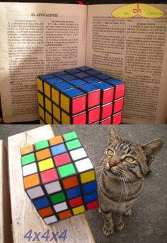 Figet Toys, Rubik's Cube, Cube Puzzle, Strange Photos, Cubes, Revenge, Good Night, Brother, Collection