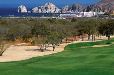Cabo San Lucas Country Club - Los Cabos, Mexico.  Played it when it was the Raven Golf Club.