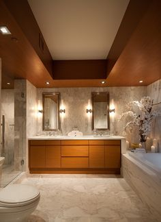 Drop Ceiling Decorative Tiles Simple Decorative Ceiling Tiles Bathroom Contemporary With Rainfall Review