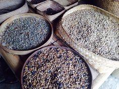 Wonderful look at Agro Tourism - Review of Bali Pulina Agro Tourism, Gianyar, Indonesia - TripAdvisor