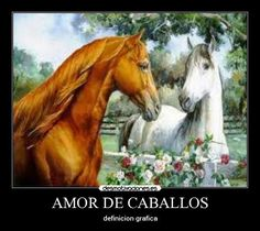 Imagenes d caballos con frases d amor - Imagui