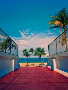 Fort Lauderdale Beach Miami Florida, Florida Beaches, South Florida, Fort Lauderdale Beach, New River, Magic City, Best Cities, Palms, Mother Nature