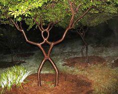 Peter Cook - Tree Shaper