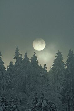 Frostmoon by Knechte  shown on the link. This picture manages to evoke a real sense of coldness as you look at it.