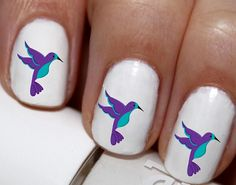 20 pc Spring Time Humming Birds Love Humming by EasyNailTrends