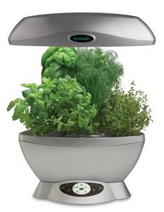 AeroGarden 901013-1200 Space-Saver 6 with Gourmet Herb Seed Kit, Silver.  This is the model Joan gave me.