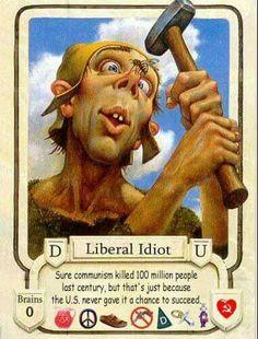 Dumb Liberal