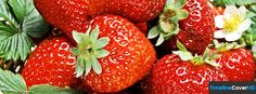 Strawberries 3 Facebook Timeline Cover Hd Facebook Covers - Timeline Cover HD