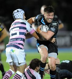 Glasgow Warriors 29 Cardiff Blues Blues lose ground on Ulster Rugby League, Rugby Players, Scottish Rugby, Australian Football, Rugby Men, Cardiff, Hot Boys, Glasgow, Warriors