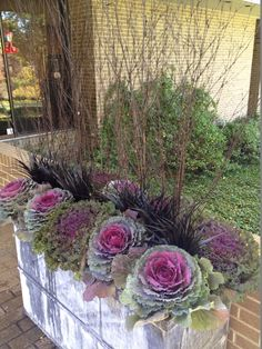 Gardening With Containers Black twigs, ornamental kale. Perfect planters - Try these fabulous fall container ideas to brighten your porch, deck or garden! Love these fall planter ideas! Fall Planters, Outdoor Planters, Garden Planters, Autumn Planter Ideas, Planters For Front Porch, Indoor Outdoor, Garden Basket, Hanging Planters, Autumn Garden