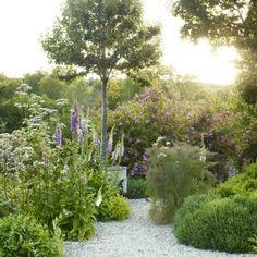 Image result for jinny blom lavender