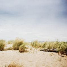 Fine art photography print Beach photography  by mylittlepixels, $13.00