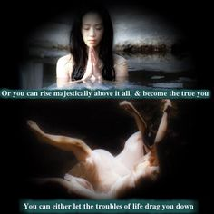 You can either let the troubles of life drag you down, or you can rise majestically above it all, & become the true you.