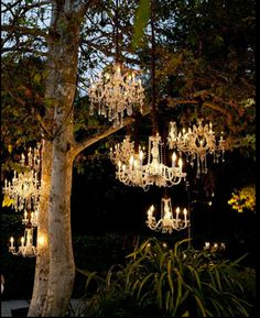 Imagine chandeliers like these lighting up your bride's outdoor evening wedding