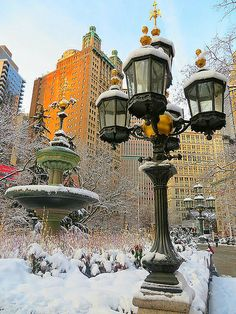 City Hall Park, New York City. Go To New York, New York City, Holidays In New York, Beautiful Places, Beautiful Pictures, I Love Nyc, Lower Manhattan, Best Cities, Winter Scenes