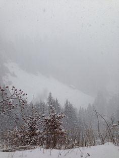 Ein schöner Schneeausflug