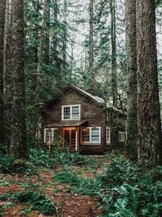 Tiny Cabins, Log Cabins, Mountain Living, Log Cabin Homes, Cabins In The Woods, Home Decor Inspiration, Cottage Style, Evergreen, Tiny House