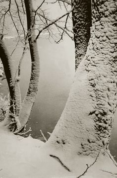 Walter Hege, Seeufer im Winter, 1930