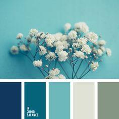белый, бледно-голубой, бледно-синий цвет, васильковый цвет, монохром…