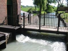 Crofton Pumping station. Over a ton of water rushes out every few seconds into this channel, and to the canal.