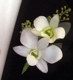 traditional orchid corsage for fathers and grandfathers. Homecoming Flowers, Graduation Flowers, Prom Flowers, Flowers In Hair, Wedding Flowers, Long Flowers, Pretty Flowers, Orchid Boutonniere, Prom Corsage And Boutonniere