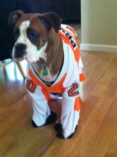 Twitter fan @coldav8's dog rocks a Pronger jersey. #HockeyPets