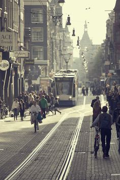 tram - Amsterdam - The Netherlands