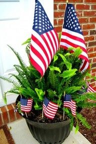 july 4th plants