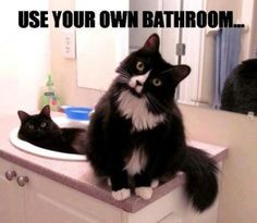 Use your own bathroom...