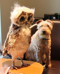 Emma Hall textile owl (the dog is real!!)