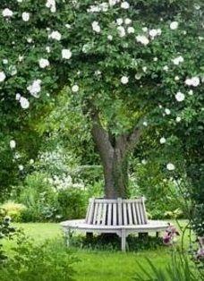 Zening life: 127 - Special spots - locais especiais