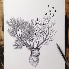 Italian artist Alfred Basha combines animals and natural elements such as trees, branches and leaves to create his beautiful drawings. More illustrations via Ideia Quente drawings Hand Drawn Animal Illustrations by Alfred Basha Ink Drawings, Animal Drawings, Cool Drawings, Animal Illustrations, Drawing Animals, Drawings Of Trees, Tattoo Illustrations, Hipster Drawings, Unique Drawings
