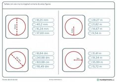 Ficha de longitud de círculos para niños de 6º de primaria