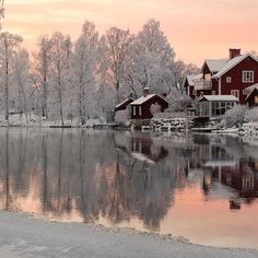 Your Travel Direct. Beautiful World, Beautiful Images, Winter Love, Winter Magic, Winter Pictures, Beautiful Sunrise, Winter Beauty, Nature Scenes, Winter Scenes