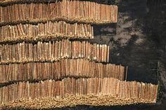 Photographer Klaus Leidorfs Aerial Archaeology - Stock of Wood