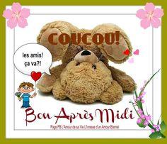 Coucou! Les amis! Ça va?! Bon Après Midi #bonapresmidi ourson ours peluche
