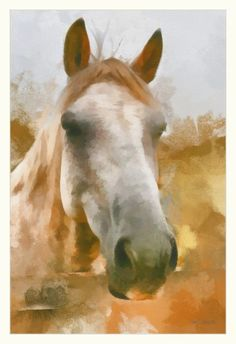 """""""Horse Portrait,"""" watercolor - wow! is this an edited photograph? Looks so real!!!"""