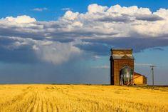 Prairie Rain - Central Washington  Photo Credit- Rob Desch Photography
