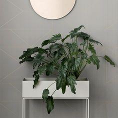 Aufbewahrung Pflanzen Plant Box Grey klein von Ferm Living