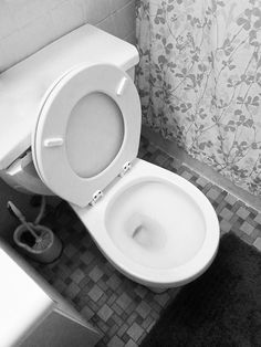 My New Trick – How to Get the Toilet Seat Down (Or At Least Laugh Trying)