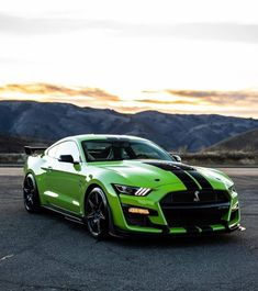 Ford Mustang Shelby Cobra, Mustang Cars, Exotic Sports Cars, Cool Sports Cars, Custom Muscle Cars, Street Racing Cars, Super Sport Cars, Fancy Cars, Best Luxury Cars