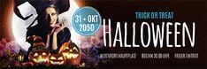 Diverse Vorlagen für das Thema Halloween finden Sie bei onlineprintXXL #werbebanner #werbeplane #halloween #kuerbis #hexe #schaurig #gruselig #vorlagen #trickortreat #pumpkin Creepy, Scary, Halloween, Advertising, Promotional Banners, Pattern Drafting, Witch, Templates, Im Scared