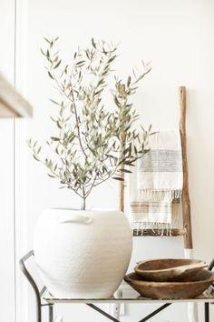 Indoor Olive Tree, Olivier En Pot, Home Decoracion, Modern Farmhouse Decor, Modern Decor, Home Decor Inspiration, Decor Ideas, Cheap Home Decor, Home Decor Accessories