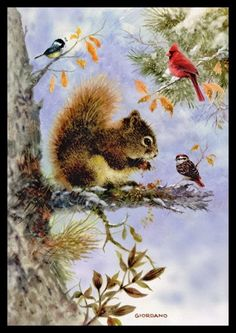 070-GC Greg Giordano BIRD & RED SQUIRREL Unused Christmas Greeting Card