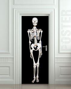 "Sceleton ETIQUETA Puerta Cráneo Cráneo mural Sistema óseo decole Película autoadhesiva 30x79 cartel ""(77x200 cm) /"